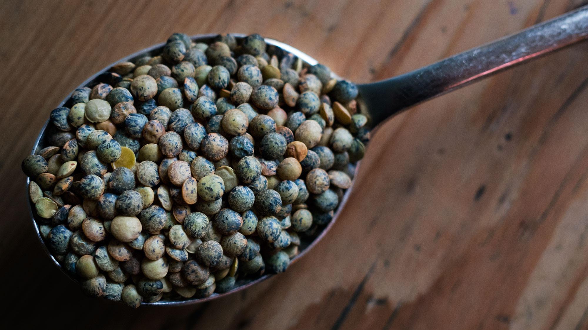 puy-lentil