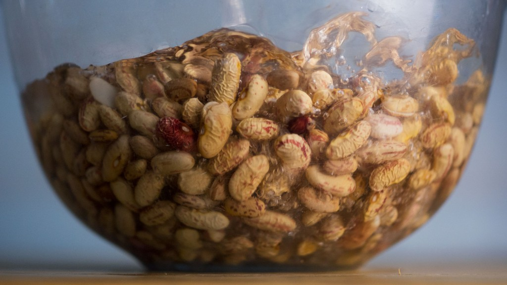 Dried beans being soaked in a bowl of water