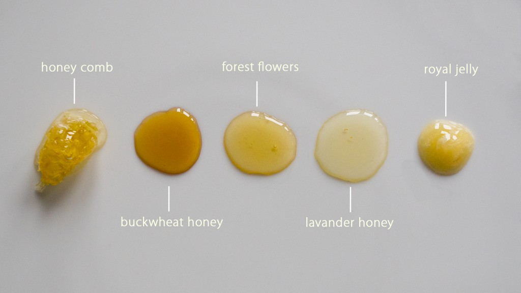honey types2
